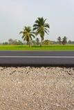 Coconut Road. Stock Image