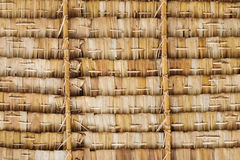 Coconut roof Stock Image