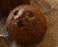 Coconut on sacking. Coconut shell as a mask Stock Image