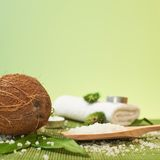 Coconut and salt composition Royalty Free Stock Image