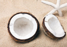 Coconut on the sand beach Royalty Free Stock Photography