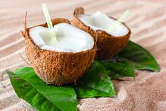 Coconut on the sand beach stock images