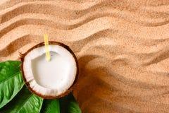 Coconut on the sand beach Stock Photography