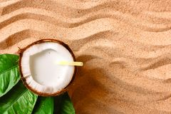 Coconut on the sand beach Royalty Free Stock Images