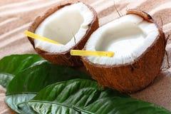 Coconut on the sand beach Stock Photos