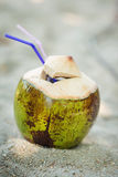 Coconut on the sand Stock Photo