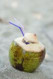 Coconut on the sand Royalty Free Stock Image