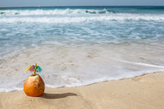 Coconut in the sand. Royalty Free Stock Images