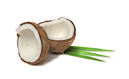 Coconut sections Stock Photo