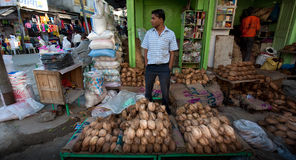 Coconut Seller Stock Image
