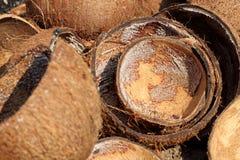 Coconut shell Stock Photos