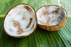 Coconut shell. On banana leaf Stock Photography