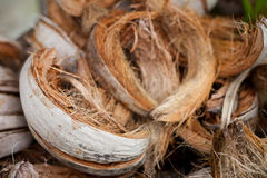 Coconut Shell. In the Basket Royalty Free Stock Photos