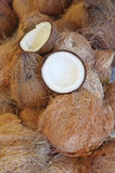 Coconut shell. Opened Coconut shell on Coconut stack Royalty Free Stock Image