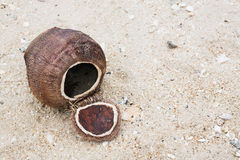 Coconut shell on the beach. Close up coconut shell on the beach royalty free stock photos