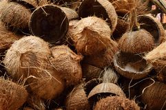 Coconut shell. Bunch of scraped Coconut shell royalty free stock images