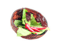 Coconut shell with chillies and vegetables Royalty Free Stock Photo