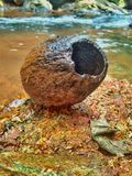 Coconut shell. The empty black and old empty coconut shell lying on the small stream side on the red rock stock photo