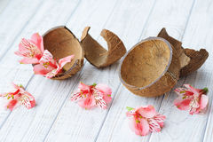 Coconut shell and flowers Royalty Free Stock Photography