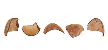 Coconut shell fragments Royalty Free Stock Images