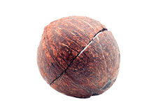 Coconut shell Stock Images