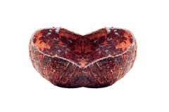 Coconut shell with love shape Stock Images
