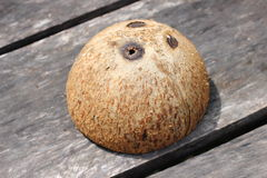 Coconut shell. In my home Royalty Free Stock Photos