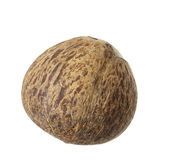 Coconut shell Stock Image