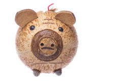 Coconut Shell Piggy Bank Isolated Stock Photography