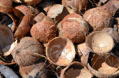 Coconut shells, background Stock Images