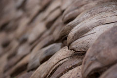 Coconut shells. Closeup of brown, cracked, coconut shells royalty free stock images