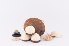 Coconut, Shells and Coconut Sweets. Coconut, sweet coconut and shells on white background stock photo
