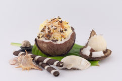 Coconut, Shells and Coconut Sweets. Coconut, sweet coconut and shells on white background stock images