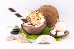 Coconut, Shells and Coconut Sweets. Coconut, sweet coconut and shells on white background stock photos