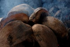 Coconut shells in smoke. Coconut shells on fire, in smoke Royalty Free Stock Photos