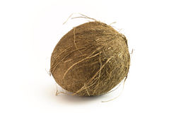 Coconut sideways. With long hairs stock photography