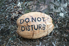Coconut sign. Do not disturb hotel sign from coconut Stock Photography