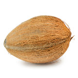 Coconut. Single Hard-shelled Coconut Over The White Background Royalty Free Stock Photos
