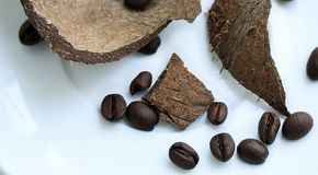 Coconut skin and coffee beans on a white plate close up stock photos