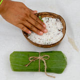Coconut for spa royalty free stock photo