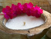 Coconut spa candle and pink flowers. Coconut spa candle with pink flowers Stock Images