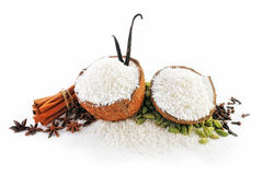 Coconut and Spice Stock Images