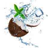 Coconut with splashing water. Over white Royalty Free Stock Photo