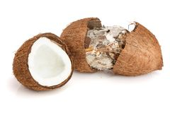 Coconut spoiled with mold isolated on white background.  Royalty Free Stock Image