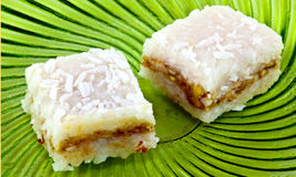 Coconut square sweets Royalty Free Stock Photo