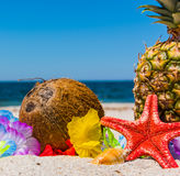 Coconut and star fish on the sand Royalty Free Stock Images