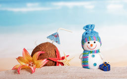 Coconut, starfish, flower, snowman and Christmas present against sea. Royalty Free Stock Photography