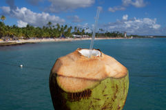 Coconut with straw drink on the beach. In Caribbean Stock Photo