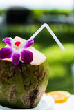 Coconut with straw and flower Stock Photos