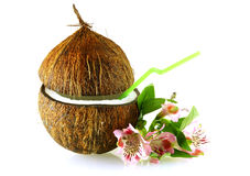 Coconut with straw and flowers over white Stock Photography